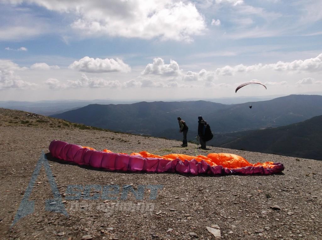 Azinha Launch